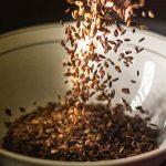Laneno seme kao lek