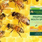 Propolis uništava viruse i bakterije