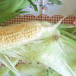 Kukuruzna svila kao lek
