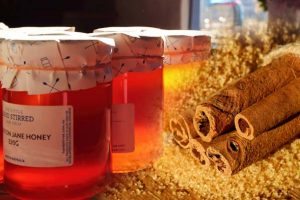 Med i cimet – Lekovita svojstva i recepti